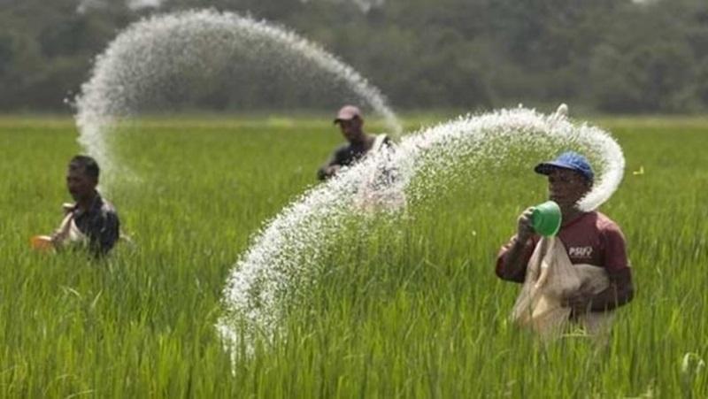 Kadis Pertanian Tegaskan, Stok Pupuk di Bolmong Aman