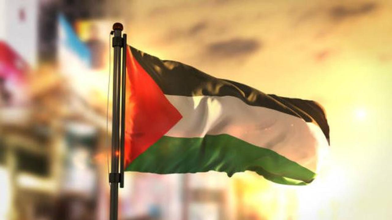 Karena Hina Palestina, Seorang Pelajar di-DO